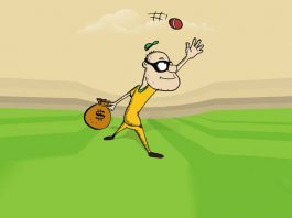 cricket-fun